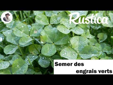 Semer des engrais verts youtube for Engrais 3 fois 15