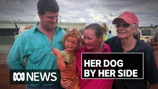 Toddler found, her dog by her side, 24 hrs after going missing on flooded cattle station | ABC News