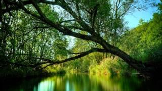 Paul Miller - Galaxy (Original Mix)