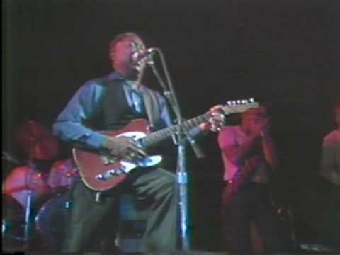 Muddy Waters Plays the Blues 1981