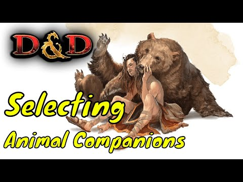 Selecting Animal Companions in Dungeons & Dragons 5E (DM Guide)