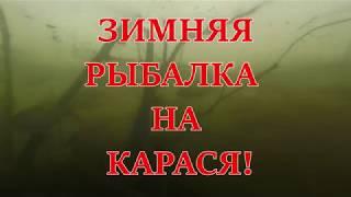 ЗИМНЯЯ РЫБАЛКА, КАРАСЬ НА МОРМЫШКУ 2018.