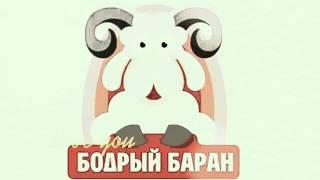 кролик купить свежее мясо кролика Где купить(, 2016-03-01T19:41:27.000Z)
