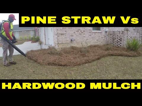 Pine Straw Vs Hardwood Mulch