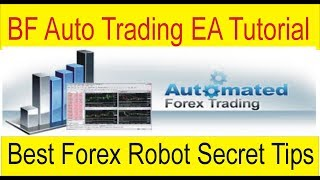 Best Forex Trading Robot 2019 | BF EA Secret Tips by TaniForex in Hindi and Urdu