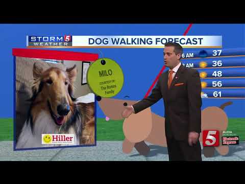 Henry's morning forecast: Sat. March 23, 2019