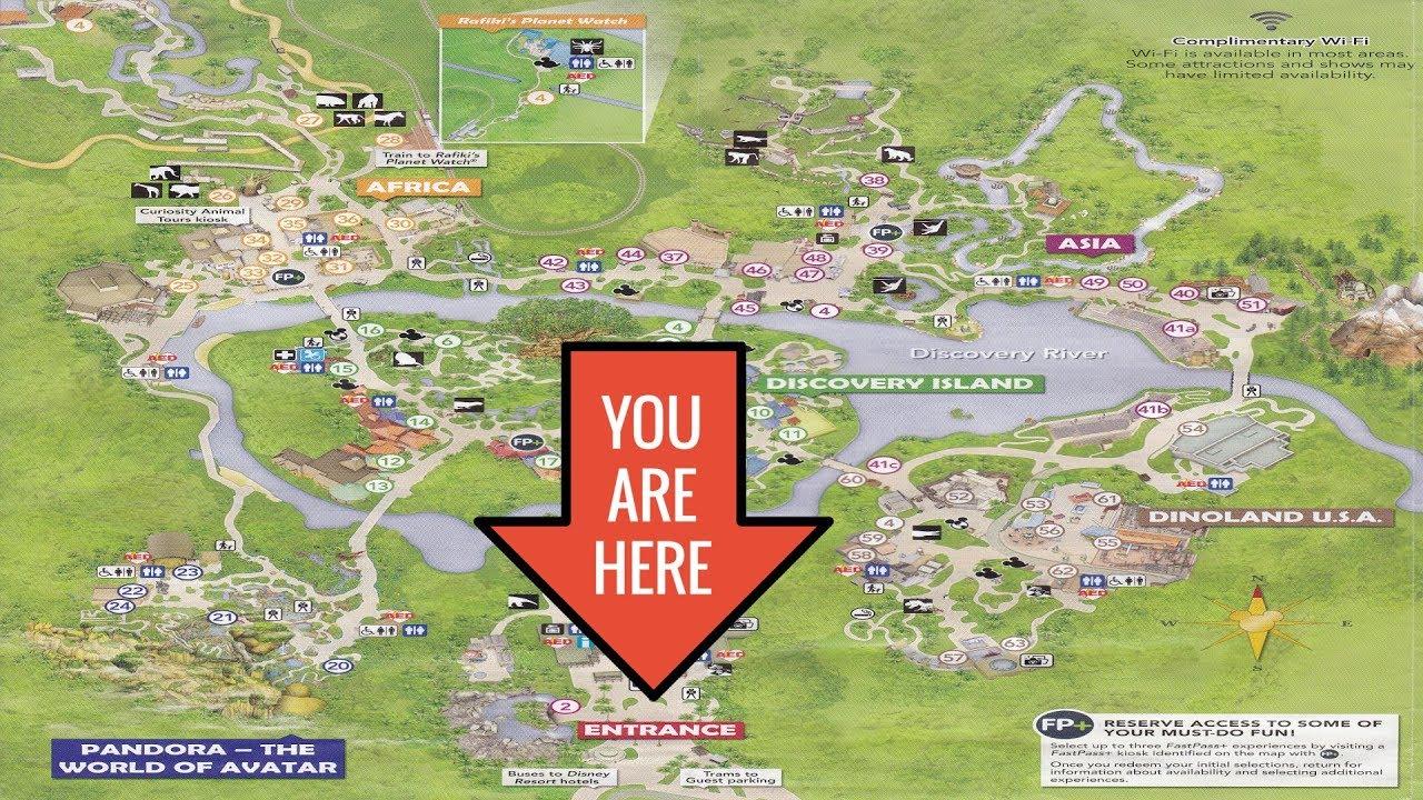 Disney\'s Animal Kingdom 2017 Map Walking Tour