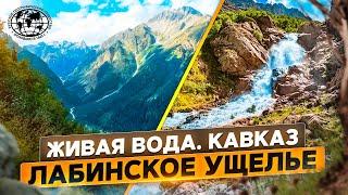 Живая вода. Кавказ | @Русское географическое общество | Лабинское ущелье
