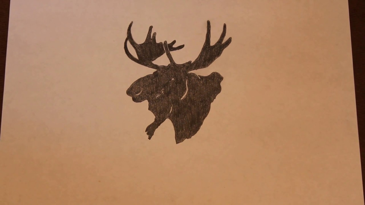 drawing a moose outline youtube