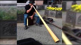 Удивительный музыкальный инструмент