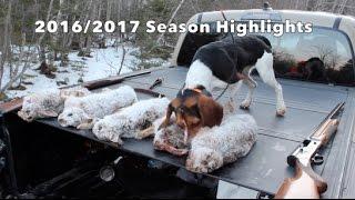 Snowshoe Hare Hunting 2016/2017 Season Highlights.