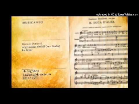 Donizetti: Angelo casto e bel