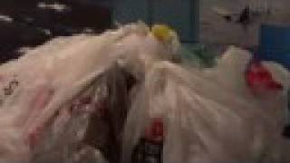 Bag Monsters: If plastic bags talked... Thumbnail