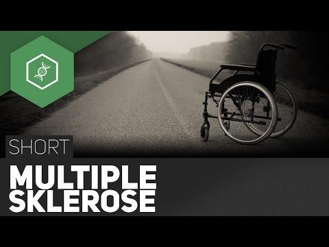 Multiple Sklerose – Selbstzerstörung des Körpers?! - TheSimpleShort