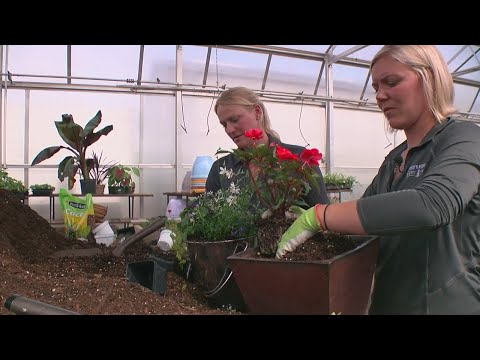 WCCO Viewers' Choice For Best Nursery In Minnesota
