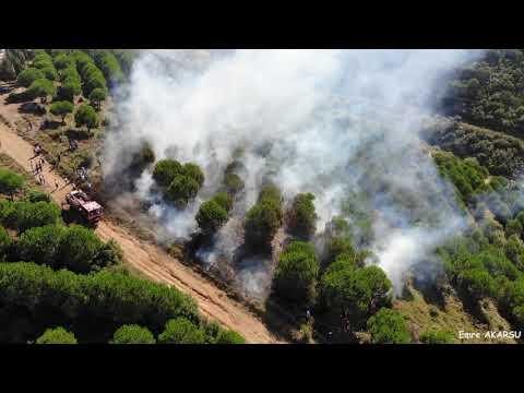 Sultangazi Kent Ormanında Yangın ( Forest Fire )