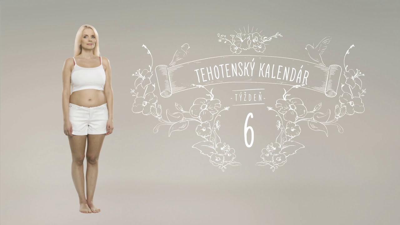 pampers tehotensky kalendar Tehotenský kalendár: 6. týždeň   YouTube pampers tehotensky kalendar