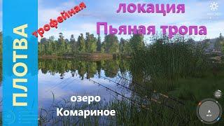 Русская рыбалка 4 озеро Комариное Плотва трофейная за деревней