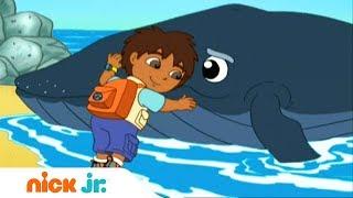 Гоу, Диего, Гоу!   Плюхнись в воду!   Nickelodeon
