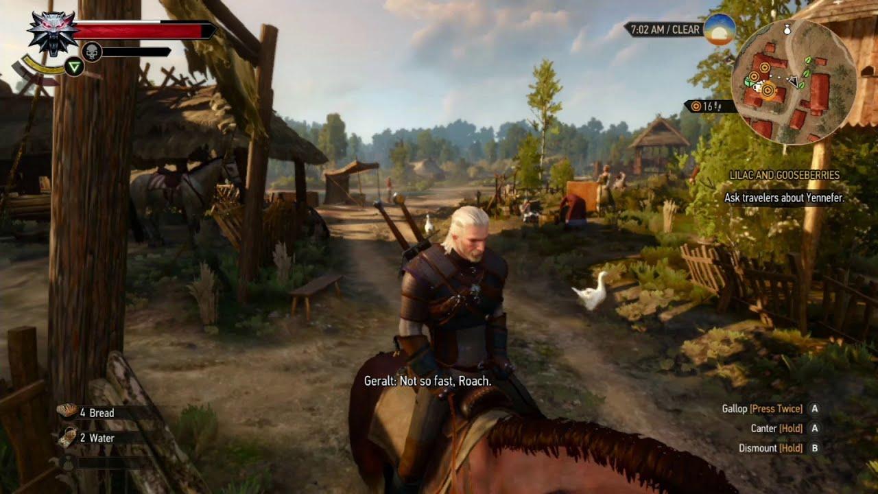 Witcher 3 Online