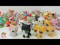 MY LITTLEST PET SHOP Collection Vintage and New Pets  | C Kavala LPS