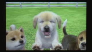CGRundertow - NINTENDOGS + CATS for Nintendo 3DS Video Game Review