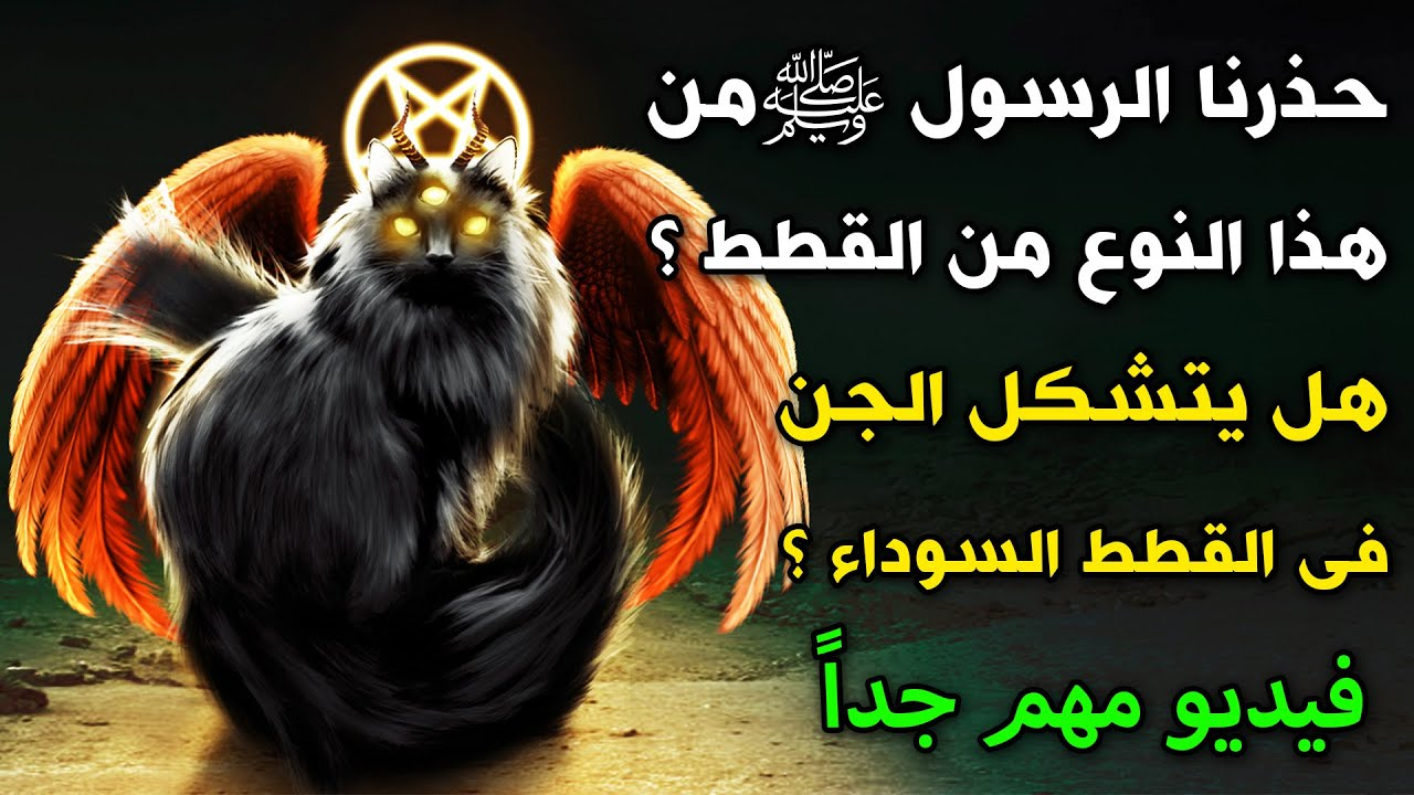 حذرنا الرسول ﷺ من هذا النوع من القطط ؟هل يتشكل الجن فى القطط السوداء ؟  فيديو مهم جداً !!