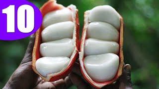 10 ถั่วที่แปลกประหลาด ที่สุดในโลก / 10 Most Unusual Nuts