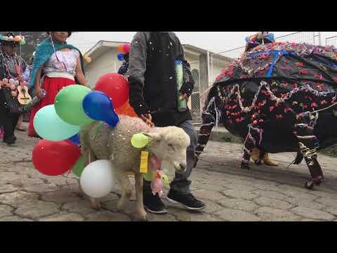 Festival Carnavales San Fernando 2018