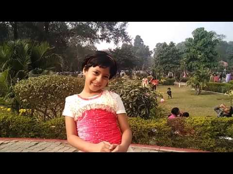 Live Commentary - Eco Park, Patna