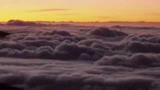 Hiatus feat. Kirtaniyas - Parklands