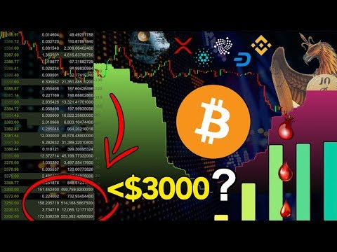 Why Bitcoin CANNOT Fall Under $3,000!!! 5 Predictions for $BTC 2019 | MASSIVE $XRP & Crypto Updates!