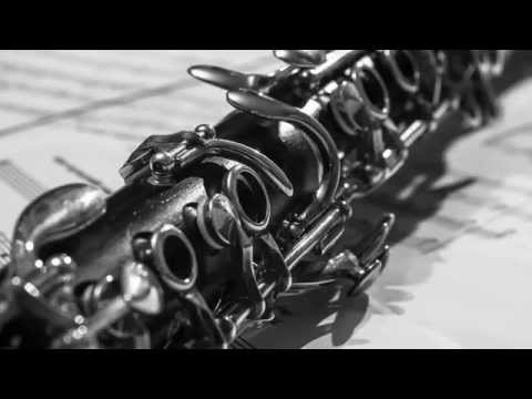 Concerto For Clarinet & Wind Ensemble: II. Song For Aaron - Frank Ticheli
