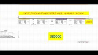 РАСЧЕТ ДОХОДА В 30 000 РУБЛЕЙ С ОДНОЙ ФЕРМЫ