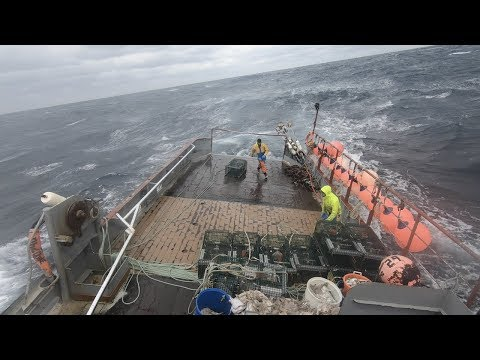 Offshore Lobster Fishing