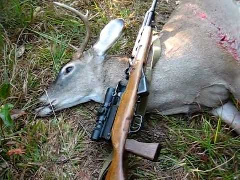 Whitetail Deer Hunting With An SKS - 7.62x39