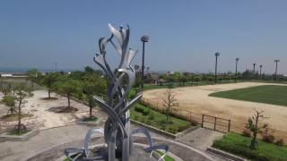 映像素材008_しおさい公園