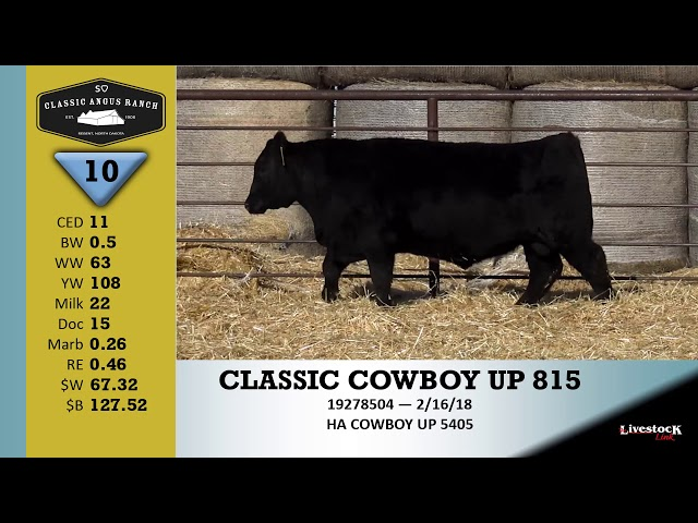 Classic Angus Ranch Lot 10
