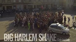 Big Harlem Shake ! L'Isle Jourdain 2013 (Officiel)