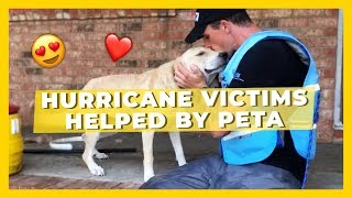 The Moment These Hurricane Flood Victims Were Helped By PETA