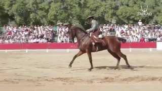 3º Pedro Manuel Garcia Daza XLIII Campeonato de España de Doma Vaquera