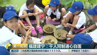 [第一时间]福建建宁:千人同制通心白莲| CCTV财经