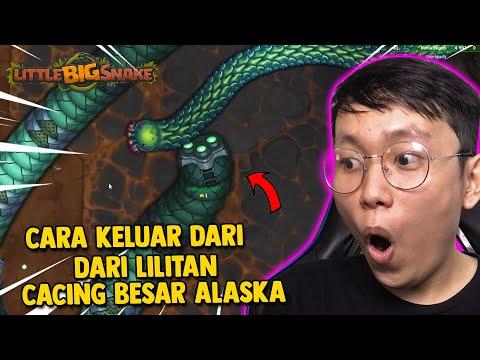 INI DIA CARA KELUAR DARI JEBAKAN CACING BESAR ALASKA! - Little Big Snake Indonesia - 동영상