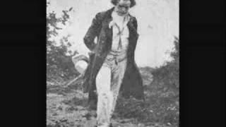 [Symphony No.1 in C Major (OP 21)] Andante Cantabile con Moto (in F Major) - Ludwig van Beethoven
