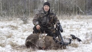 Охота на оленя(Охота на оленя с арбалетом, делимся опытом. P.S. Олень был добыт из карабина. http://dendra.ru/catalog/arbalety_dlya_okhoty/arbalet-mxb360..., 2014-12-16T14:45:42.000Z)