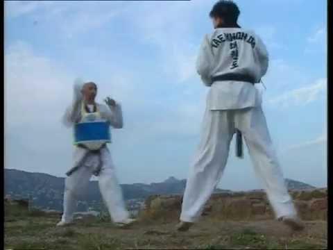 Taekwondo : Les coups de pied de base
