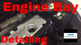 Engine Bay Detailing! How to clean, condition, protect all materials under the hood.
