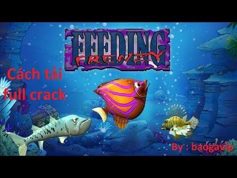 Hướng dẫn : Cách tải game Feeding Frenzy full crack