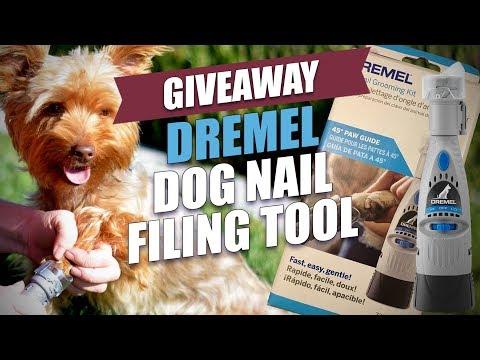 Dremel Dog Nail Filing Tool Giveaway