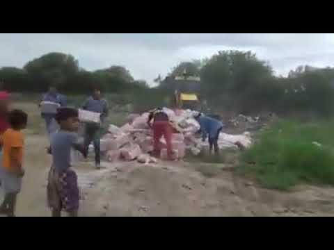 Video y polémica en Castelli: camiones municipales arrojan miles de kilos de harina a la basura
